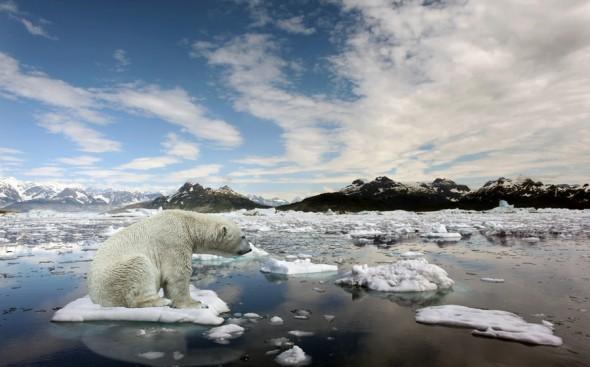 global-warming (1)