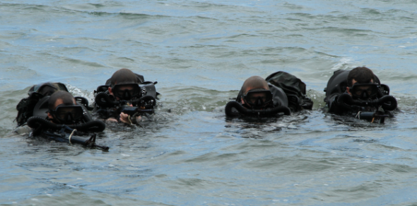 http://www.military.com/special-operations/what-is-a-navy-seal.html