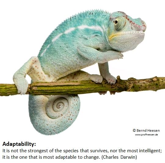 Adaptability (1)