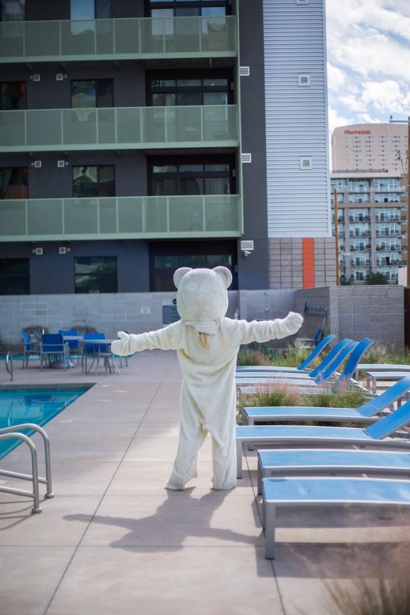Zen Polar Bear, photo credit: Deanna Alejandra Dent